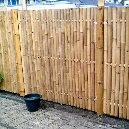 Bamboescherm Giant 180 X 180 Cm Bamboo Garden Fences Bamboo