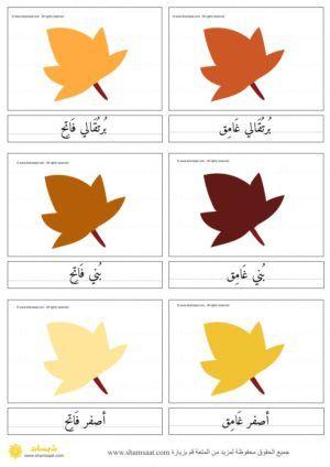بطاقات مطابقة لون ورقة الشجر للاطفال نشاط الخريف Homeschool Preschool Homeschool Preschool