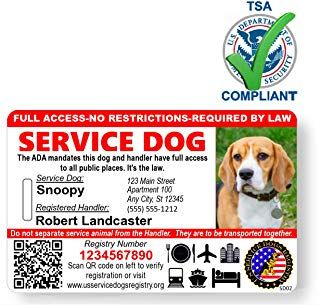 Amazon Com Esa Tag Service Dogs Dog Id Dogs