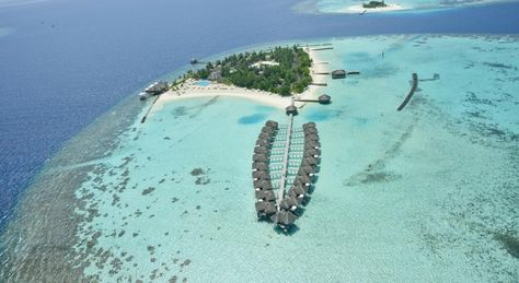 Resort Maafushivaru Maldives Dhangethi Maldives Booking