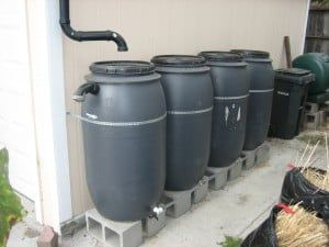 Harvesting Rainwater Can Reduce Our Need And Demand For Water Transport Systems That Threa Rainwater Harvesting Rain Barrel Stand Rainwater Harvesting System