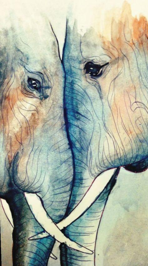 ✔ Cute Tumblr Drawings Animals #amizades mundorosa #ilhadogovernador #acfotografia