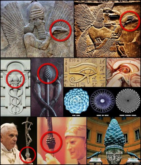 """The esoteric significance of the pinecone dates as far back as the ancient Babylonian mystery religions as a symbolic representation of the Pineal Gland (known as the """"Third Eye"""") which regulates the brain's output of DMT (known as the """"Spirit Molecule"""") Aliens And Ufos, Ancient Aliens, Ancient History, Objets Antiques, Religion, Symbolic Representation, Pineal Gland, Ancient Artifacts, Ancient Civilizations"""