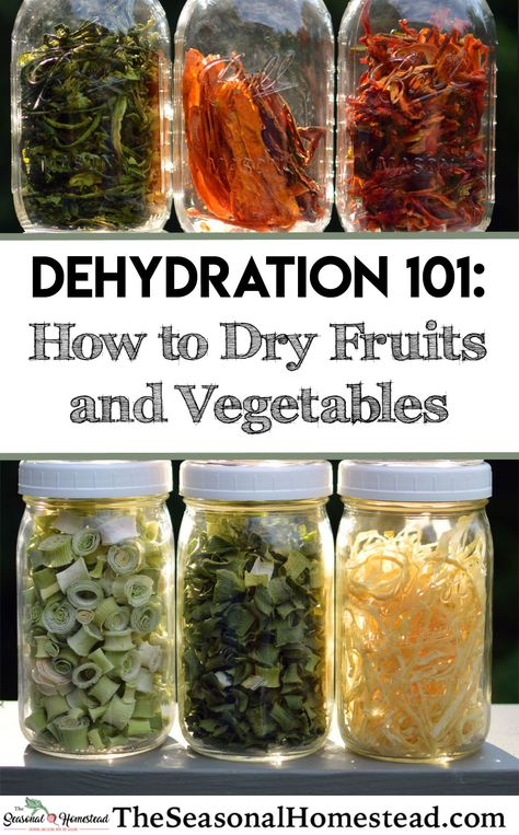 Food Dehydration Drying Fruits and Vegetables - The Seasonal Homestead Methods Of Food Preservation, Canning Food Preservation, Preserving Food, Dehydrated Vegetables, Dried Vegetables, Fruits And Vegetables, Dehydrated Food Recipes, Plat Vegan, Canning Recipes