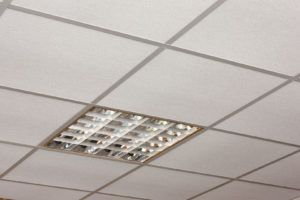 Tatra Suspended Ceiling Tiles Armstrong Ceiling Ceiling Tile