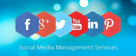 Are you looking for the best social media management tool?