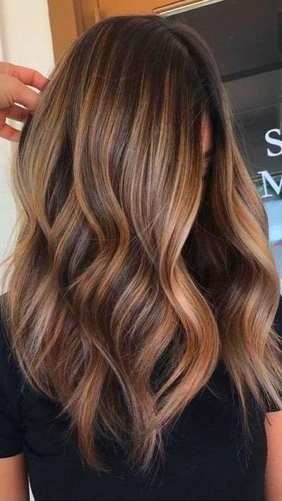 Fall Hair Colors Hair Color Balayage Light Brown Hair Brown Hair Balayage