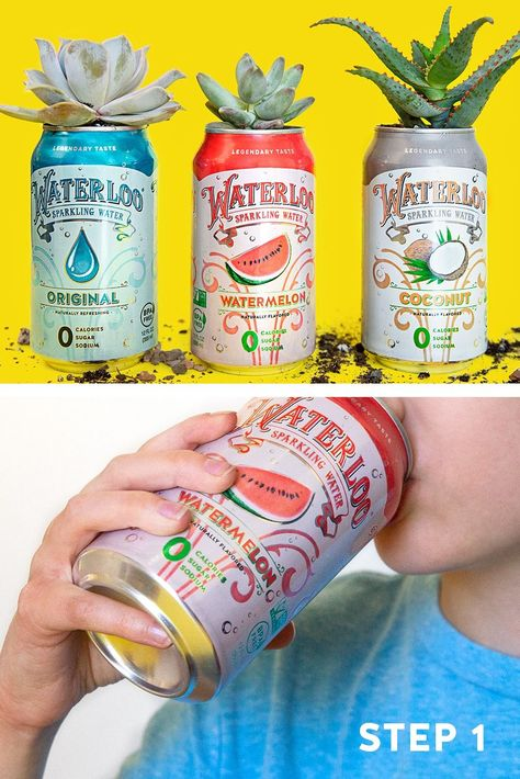 Photo of Add some flavor to the crafting table. A can opener turns any can of Waterloo into the perfect succu