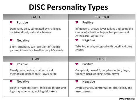 marryi disc assessment types - 800×600