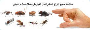Pin By شركه زهره الخليج On شركة زهرة الخليج للخدمات المنزلية Pest Control Best Pest Control Pests