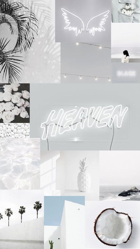 White aesthetic iPhone wallpaper🐚🥥🐑🌫