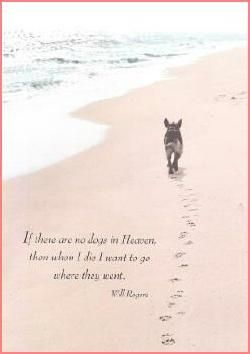 Here's a lovely dog sympathy card. Quote on Front: If there are no dogs in Heaven, then when I die I want to go where they went