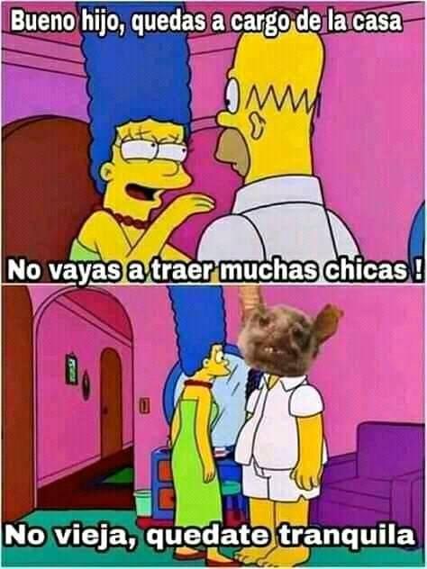 Meme Simpsons Memes Divertidos Imagenes Divertidas Viejitos