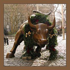 Charging Bull (sokole oko)