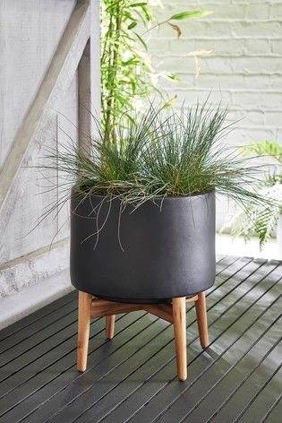 Buy Plant Stand From Next Ireland Plant Stand Plants Uk Buy Plants