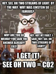 33259b44894788dbeb02c17160228b0b science cat cat memes science cat meme galleryhip com the hippest galleries! funny