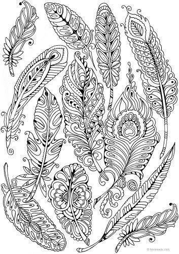 Feathers Printable Adult Coloring Pages Adult Coloring Pages
