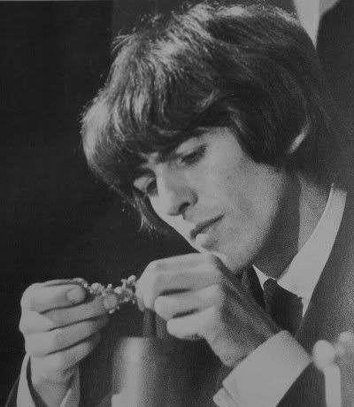 George Harrison Photo: This Photo was uploaded by darlindarlin. Find other George Harrison pictures and photos or upload your own with Photobucket free . Les Beatles, Beatles Songs, George Harrison, Bug Boy, Liverpool, Stevie Ray Vaughan, David Gilmour, The Fab Four, Keith Richards