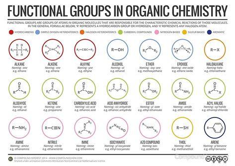 40 Chemistry Ideas Chemistry Organic Chemistry Biochemistry