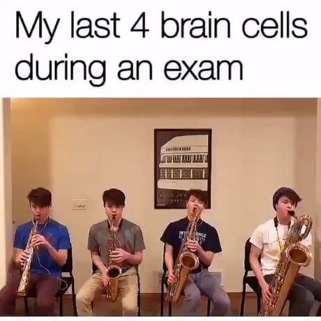 My Last 4 Brain Cells During An Exam Brain Meme Funny Relatable Memes Funny Memes