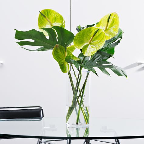 This fresh green tropical bouquet is a vibrant way to send your best wishes to friends, family, or colleagues.
