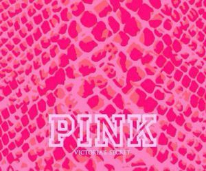 Pin By Tamara Mccarroll On ثيمات المشروع In 2021 Pink Pink Inspiration Victoria Secret