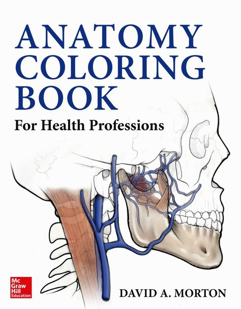 Dental Anatomy Coloring Book | Coloring Pages | Anatomy ...