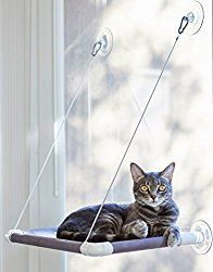 purrlala cat window perch bed purrlala cat window perch bed   cat window perch cat window and      rh   pinterest