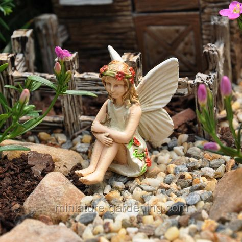 Lindsey Miniature Dollhouse FAIRY GARDEN Accessories