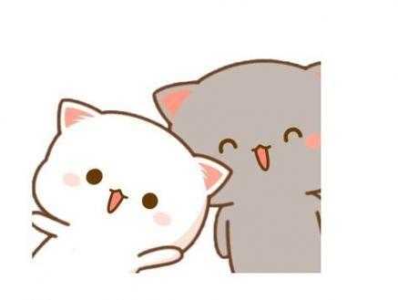 Animal Cat Cute Drawing