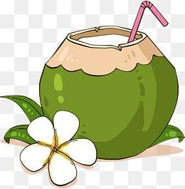 ناقلات بابوا نيو غينيا Png المتجهات Psd قصاصة فنية تحميل مجاني Pngtree Coconut Vector Clip Art Fruits Drawing