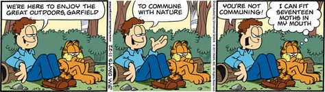 Garfield Strip from 22 Nov 2011