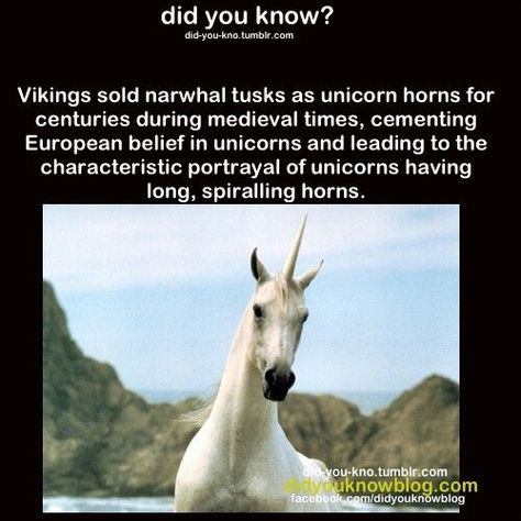 My whole life is a lie. Thanks, Vikings.