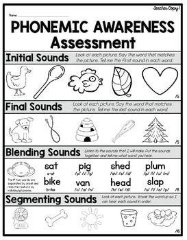 Phonemic Awareness Assessment FREEBIE | Phonemic awareness ...