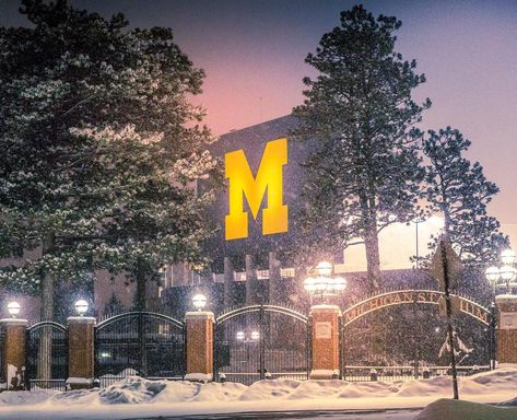 Find things to do in winter, and all season in the Ann Arbor area! Traverse City Michigan, Michigan Travel, Michigan Wolverines Football, Alabama Football, American Football, College Football, Cheerleading Pyramids, Michigan Go Blue, Stuff To Do