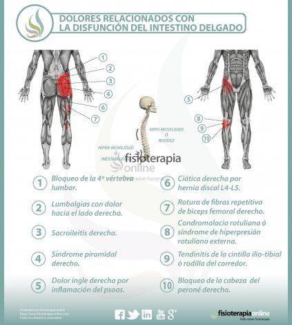 10 Ideas De Columna Salud Corporal Dolor De Espalda Reflexología