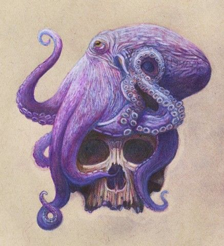 Octopus And Skull Drawing With Images Octopus Drawing Octopus