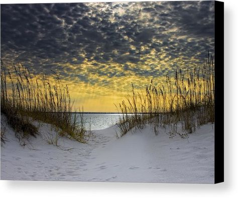 Sunlit Passage Canvas Print by Janet Fikar.  All canvas prints are professionally printed, assembled, and shipped within 3 - 4 business days and delivered ready-to-hang on your wall. Choose from multiple print sizes, border colors, and canvas materials.
