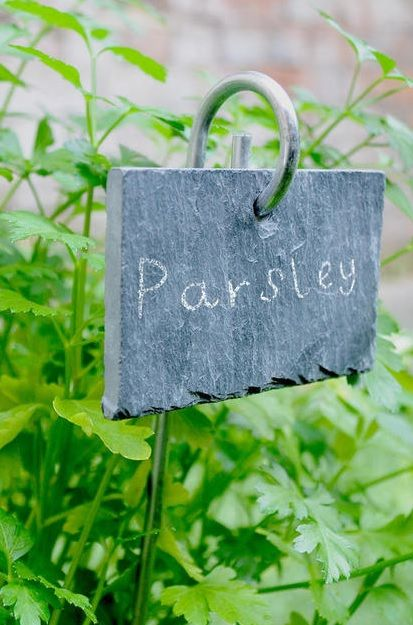 Plant Markers Making Pots, Slate Garden Markers