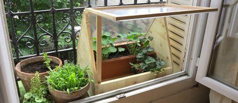 Fabriquez Une Mini Serre En Polycarbonate Pour Cultiver Sur Votre Balcon 18h39 Fr Serre Polycarbonate Serre Balcon Et Fabriquer Une Serre