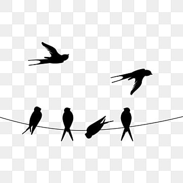 Creative Swallow Bird Flying Silhouette Bird Flying Silhouette Bird Silhouette Bird Silhouette Png Transparent Clipart Image And Psd File For Free Download Flying Bird Silhouette Bird Silhouette Black Bird