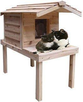 Top 10 Best Outdoor Cat Houses In 2021 Reviews Hqreview Outdoor Cat House Insulated Cat House Outdoor Cats