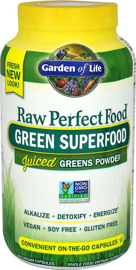 Garden Of Life Raw Perfect Food Green Superfood 240 Vegan
