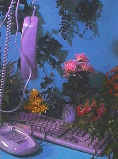 vaporwave windows Sebastian uses Adobe - vaporwave 80s Aesthetic, Purple Aesthetic, Aesthetic Vintage, Aesthetic Photo, Aesthetic Pictures, Photo Wall Collage, Picture Wall, Kitsch, Images Esthétiques