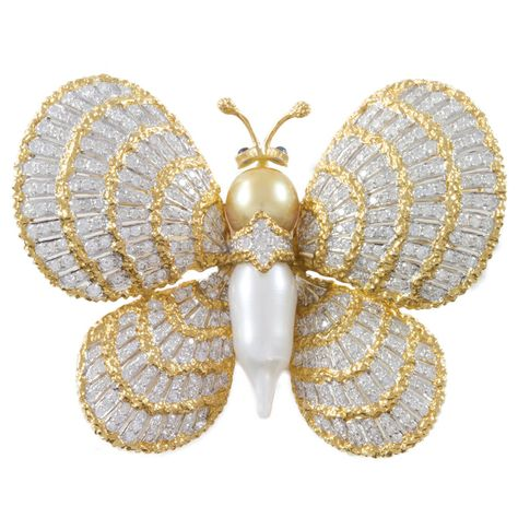 Preowned Pearl Diamond Two Color Gold Butterfly Brooch Diamond Brooches Massoni Sapphire and Diamond Brooch Superb Georgian cameo diamond brooch/pendantView this item and discover similar brooches for sale at - Lady's yellow and white gold butterfly Seashell Painting, Seashell Art, Seashell Crafts, Seashell Christmas Ornaments, Shell Animals, Black Gold Jewelry, Gold Jewellery, Diamond Jewelry, Pearl Jewelry
