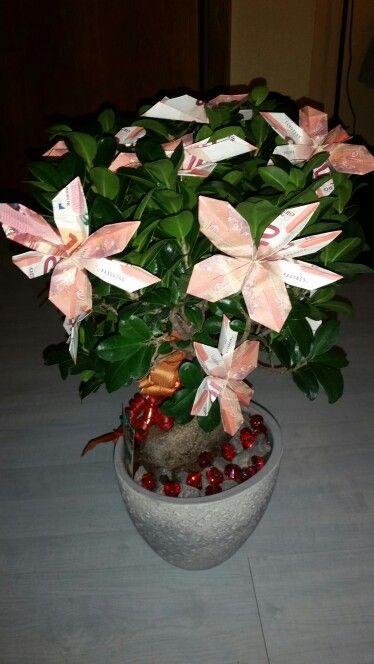 Geldbaum Bonsai Geschenk Geldgeschenke Blumen Blume Aus Geld Geschenke