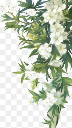Millions Of Png Images Backgrounds And Vectors For Free Download Pngtree Free Watercolor Flowers Flower Png Images Floral Watercolor