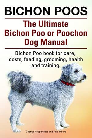 Download Bichon Poos Bichon Poo Book For Care Costs Feeding