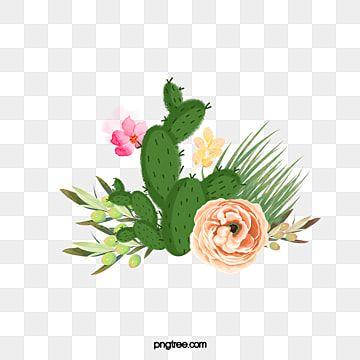 Cartoon Cactus Succulents Desenho Animado Cacto Flores Imagem Png E Psd Para Download Gratuito Flower Border Png Cactus Illustration Cactus Vector