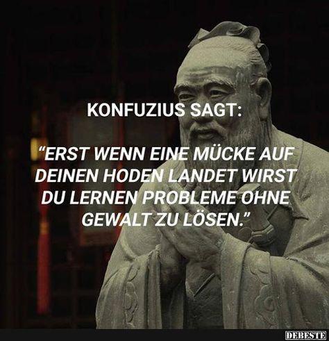 Konfuzius sagt: Erst, wenn eine Mücke auf deinem Hoden.. | Lustige Bilder, Sprüche, Witze, echt lustig